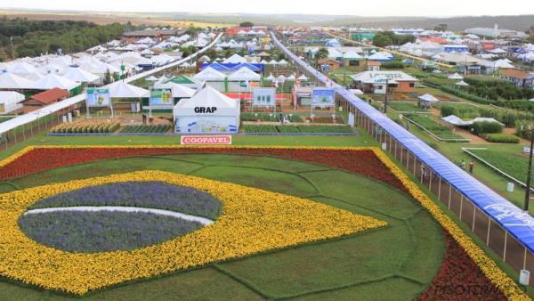 Piso Térmico estará presente no Show Rural Coopavel em 2016